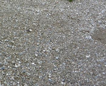 石の多い地面
